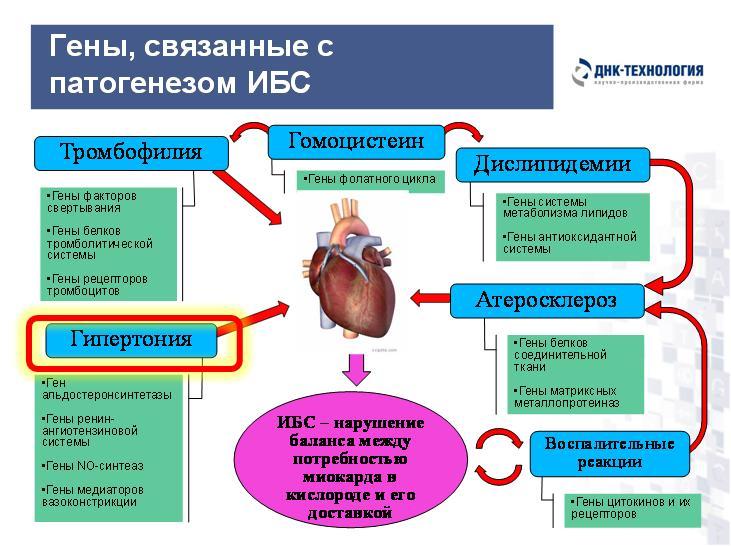 Клиника лицевой хирургии нижневартовск